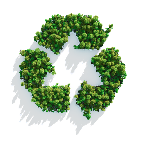 CMC_Green_Recycle_Icon.png